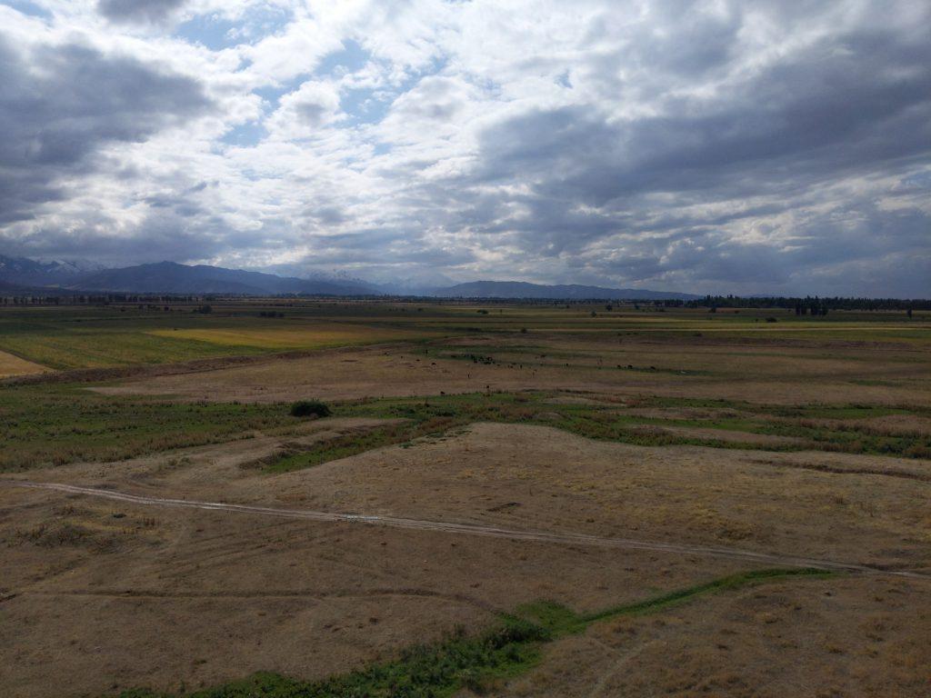 Figure 1 Endless Grassland