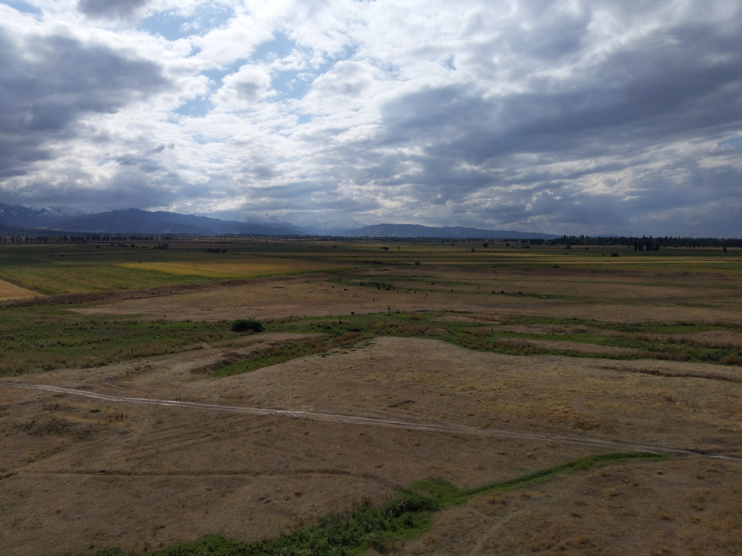 [キルギス研修2019体験記]キルギスの潜在力:観光を通じた発展の可能性